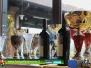 Premiazione 4 Regions' Cup Footgolf Piemonte 2016 Asti (At) 21nov15
