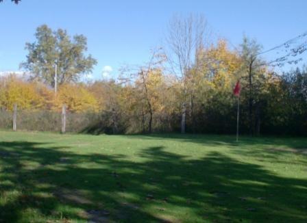 Golf Club I Carpini Nole TO-7